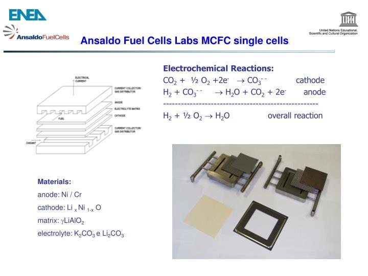 Ansaldo Fuel Cells Labs MCFC single cells