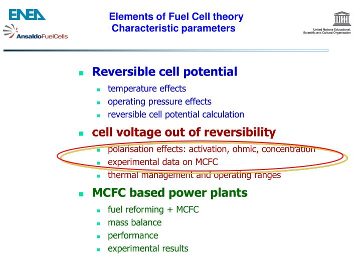 Elements of Fuel Cell theory