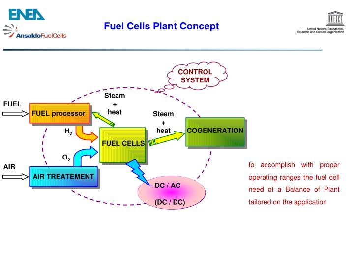 Fuel Cells Plant Concept