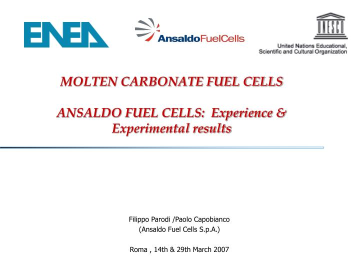 molten carbonate fuel cells ansaldo fuel cells experience experimental results