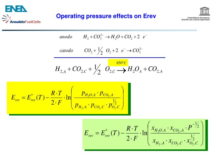 Operating pressure effects on Erev