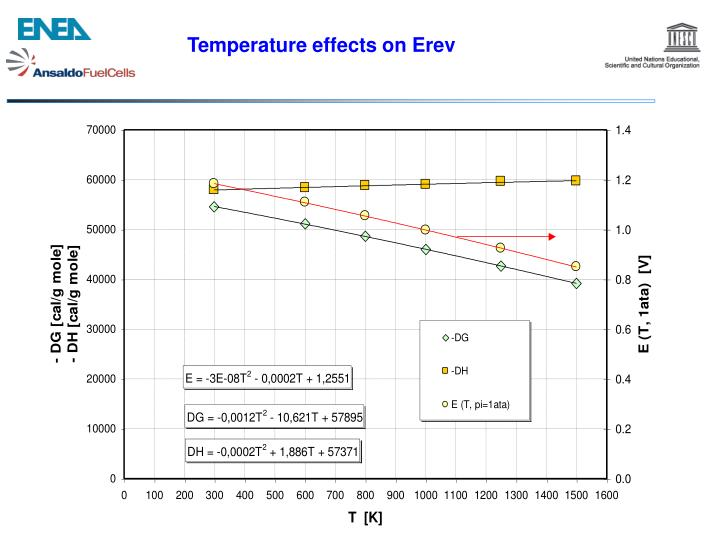 Temperature effects on Erev