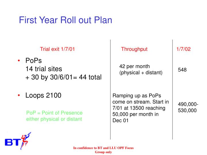 First Year Roll out Plan