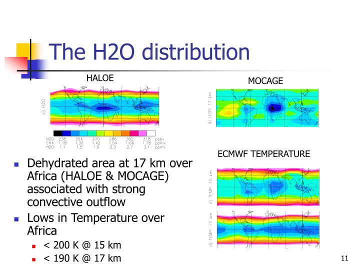 The H2O distribution