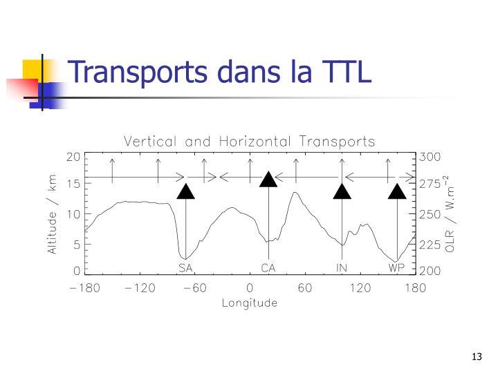 Transports dans la TTL