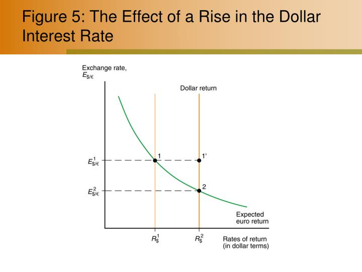 Figure 5: The Effect of a Rise in the Dollar Interest Rate