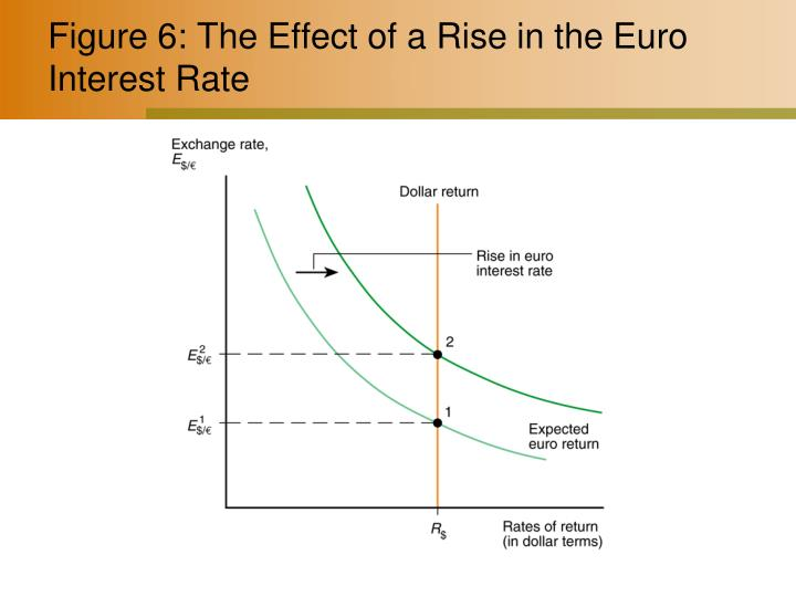 Figure 6: The Effect of a Rise in the Euro Interest Rate