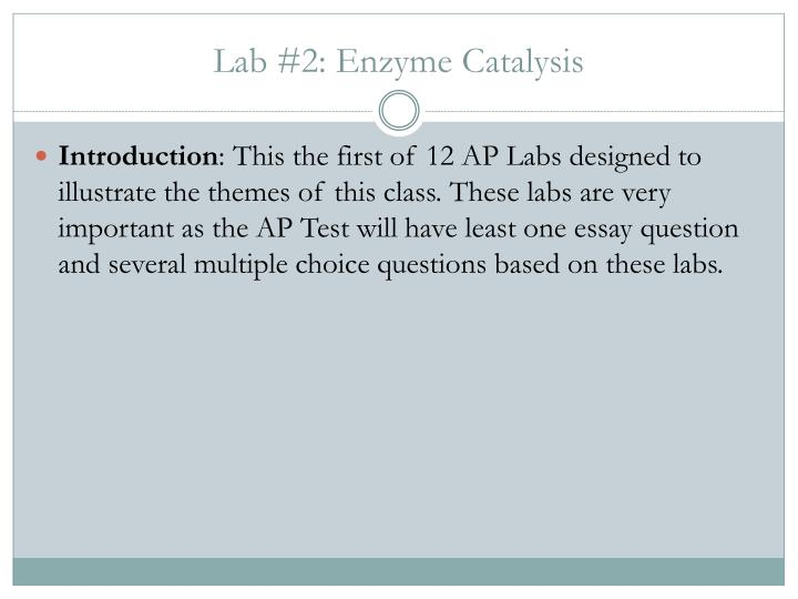 Lab 2 enzyme catalysis