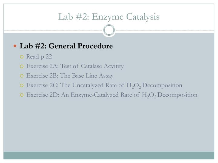Lab #2: Enzyme Catalysis