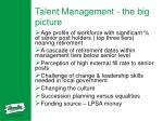talent management the big picture
