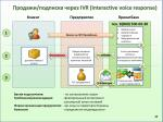 ivr interactive voice response