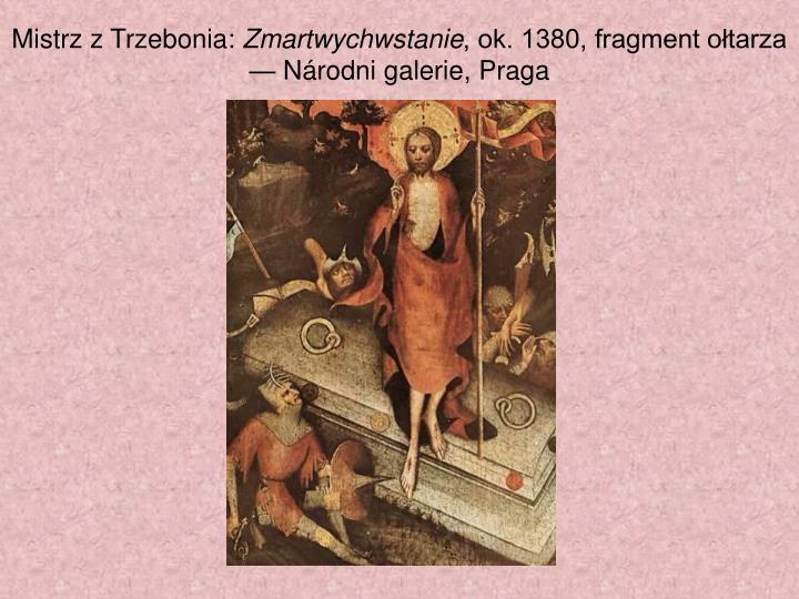 Mistrz zTrzebonia: