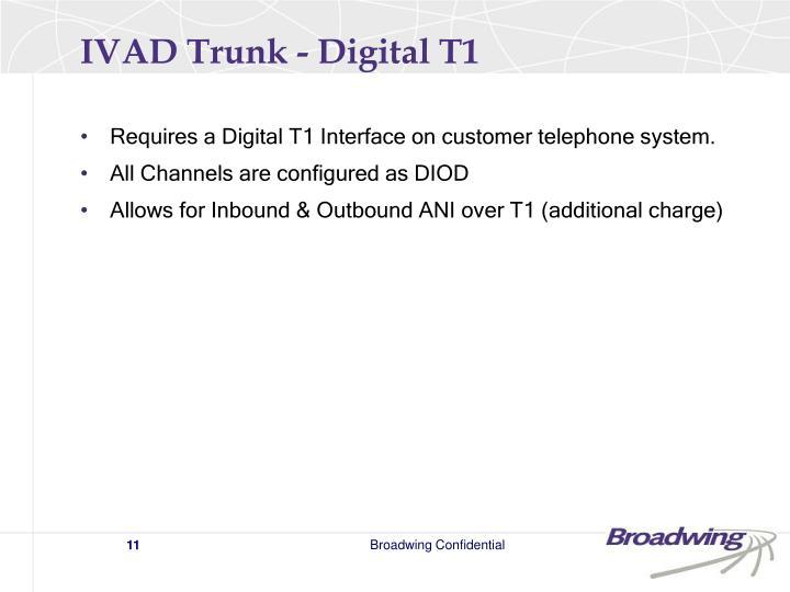 IVAD Trunk - Digital T1