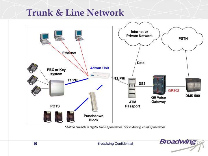Trunk & Line Network
