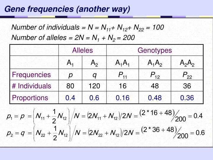 Gene frequencies (another way)