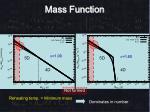 mass function