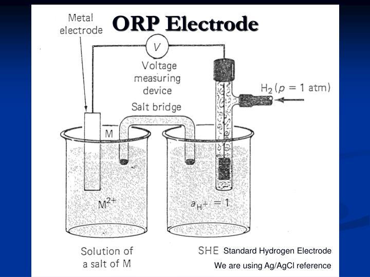 ORP Electrode