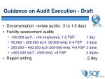 guidance on audit execution draft