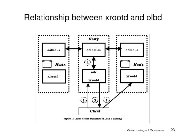 Relationship between xrootd and olbd