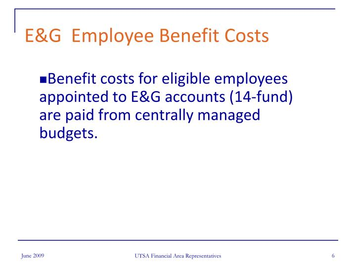 E&G  Employee Benefit Costs