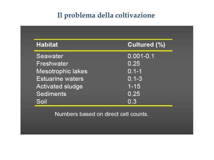 Il problema della coltivazione