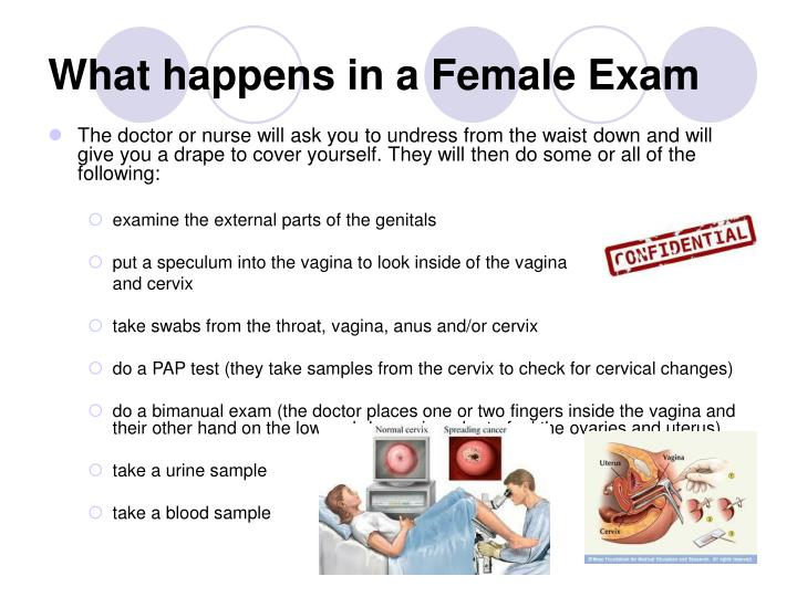 What happens in a Female Exam