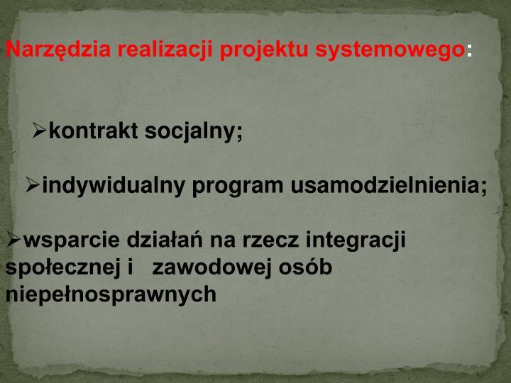 Narzędzia realizacji projektu systemowego