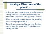 strategic directions of the plan 1
