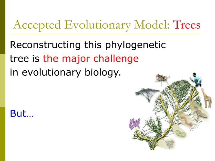 Accepted Evolutionary Model: