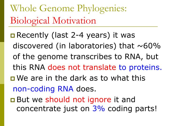 Whole Genome Phylogenies: