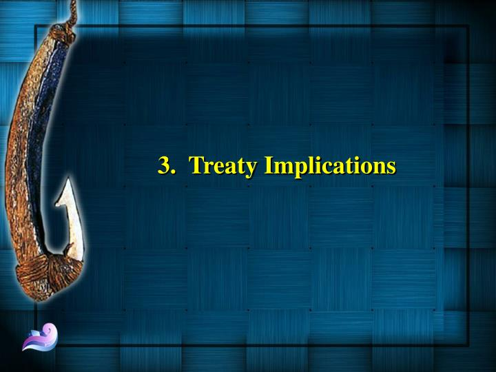 3.  Treaty Implications