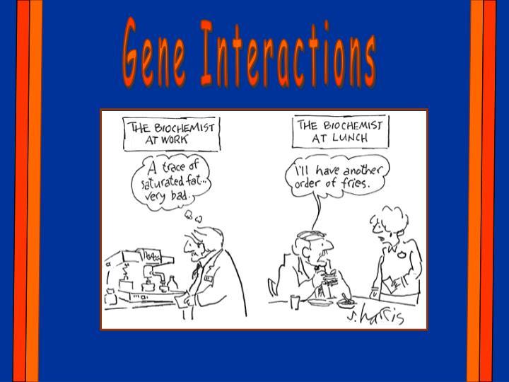 Gene Interactions