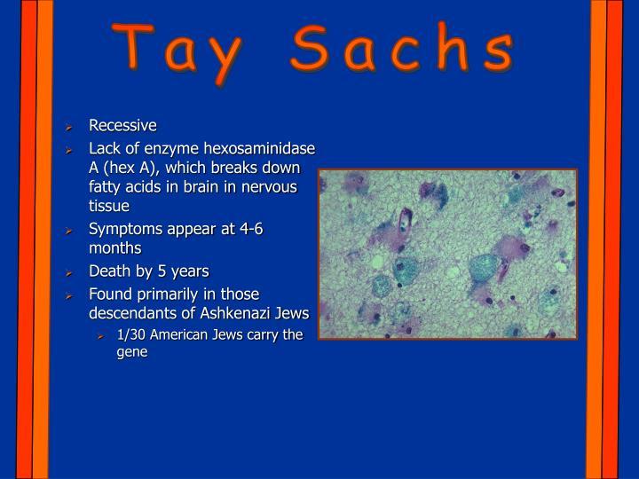 Tay Sachs