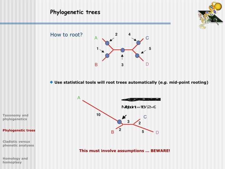 Use statistical tools will root trees automatically (