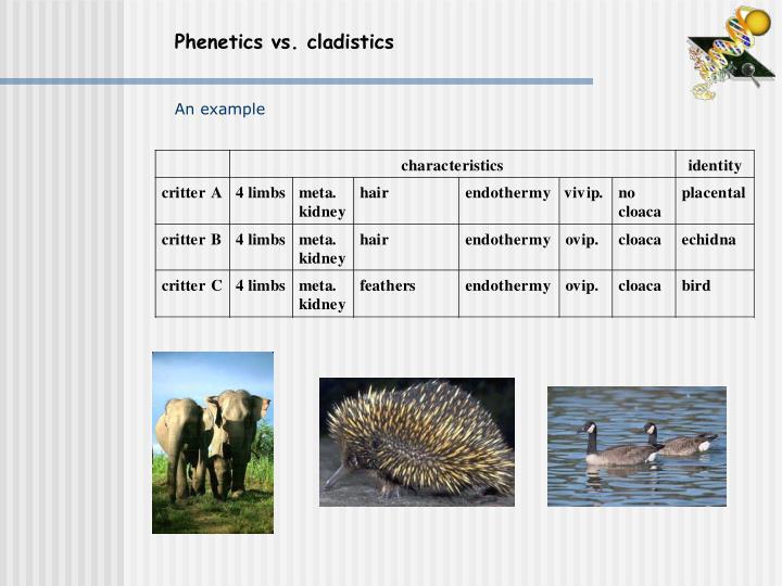 Phenetics vs. cladistics