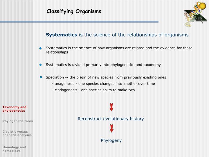 Classifying Organisms