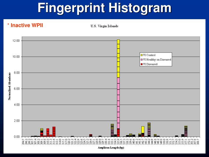 Fingerprint Histogram