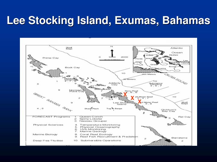 Lee Stocking Island, Exumas, Bahamas