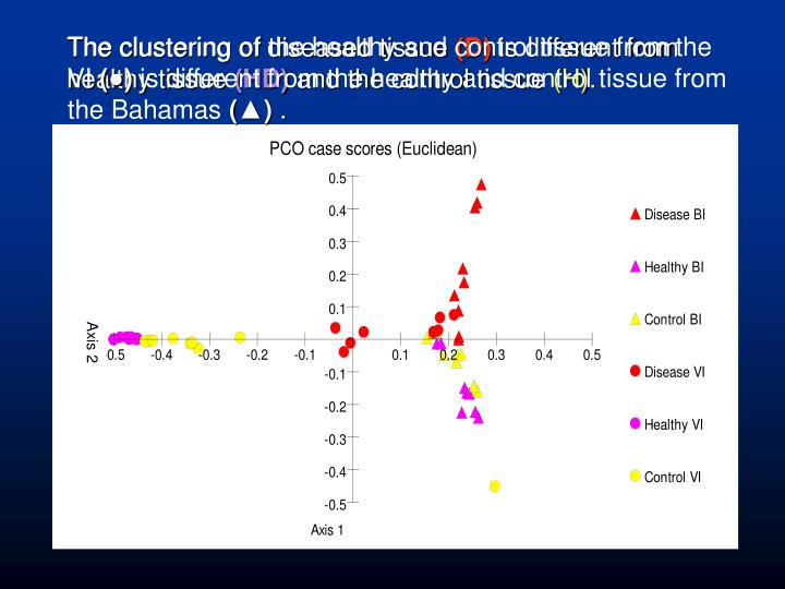 The clustering of diseased tissue