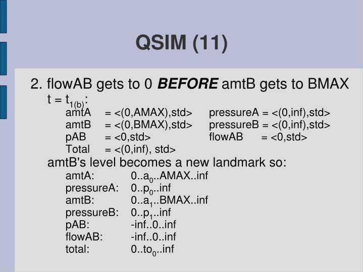 QSIM (11)