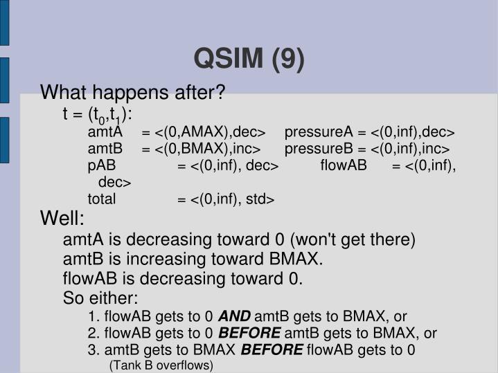 QSIM (9)
