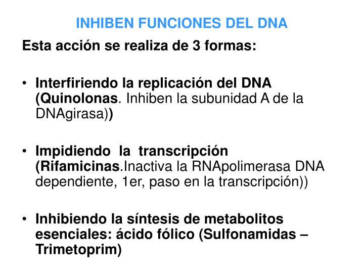 INHIBEN FUNCIONES DEL DNA