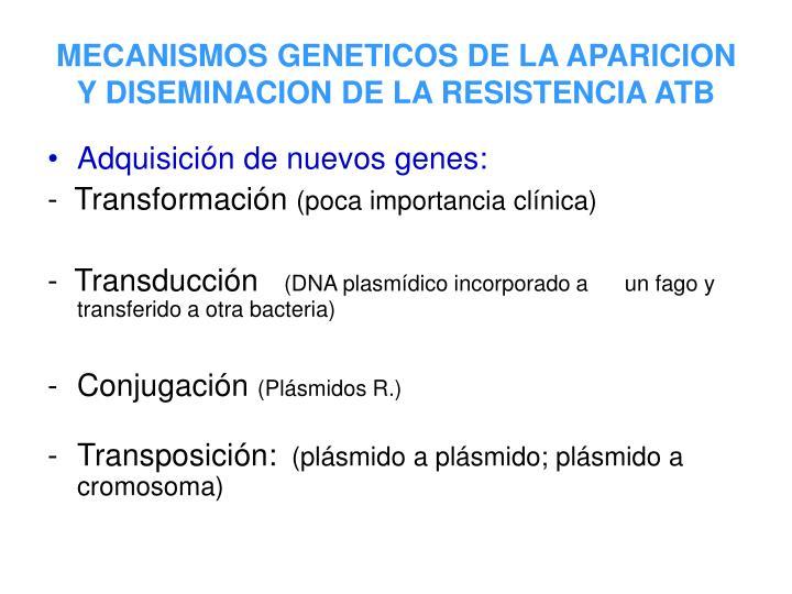 MECANISMOS GENETICOS DE LA APARICION Y DISEMINACION DE LA RESISTENCIA ATB