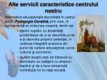 alte servicii caracteristice centrului nostru
