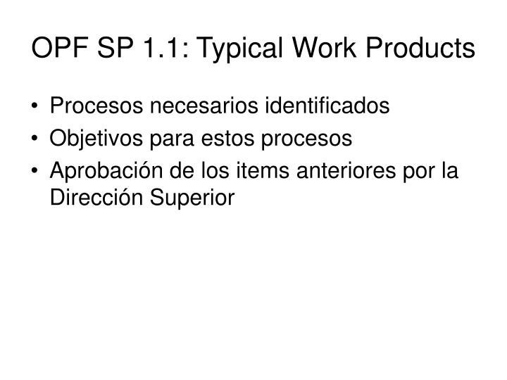 OPF SP 1.1: Typical Work Products