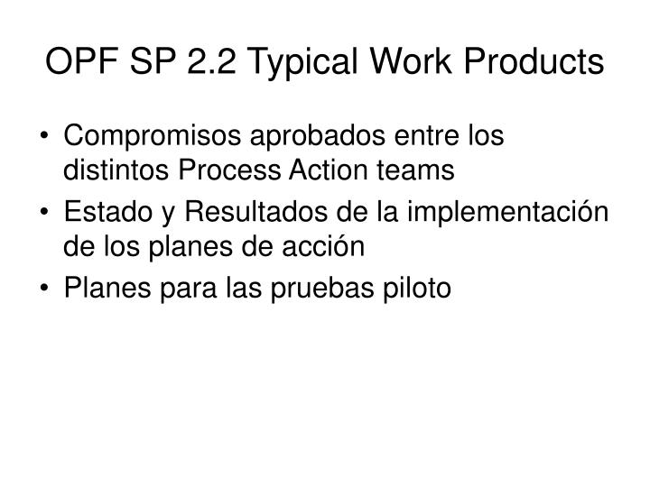 OPF SP 2.2 Typical Work Products