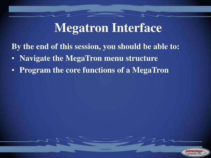 Megatron Interface