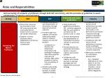 high level implementation plan roles and responsibilities1