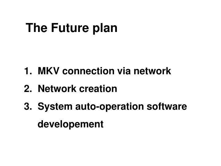 The Future plan