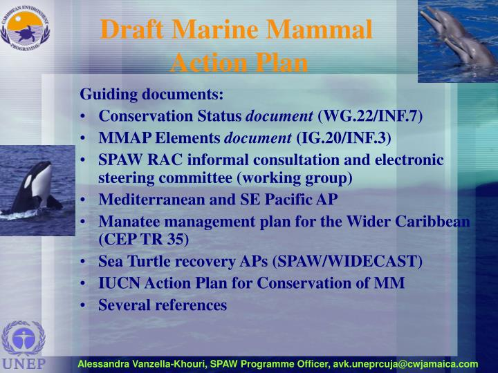 Draft marine mammal action plan